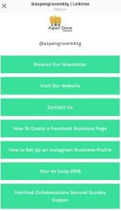Linktree for business Instagram accounts