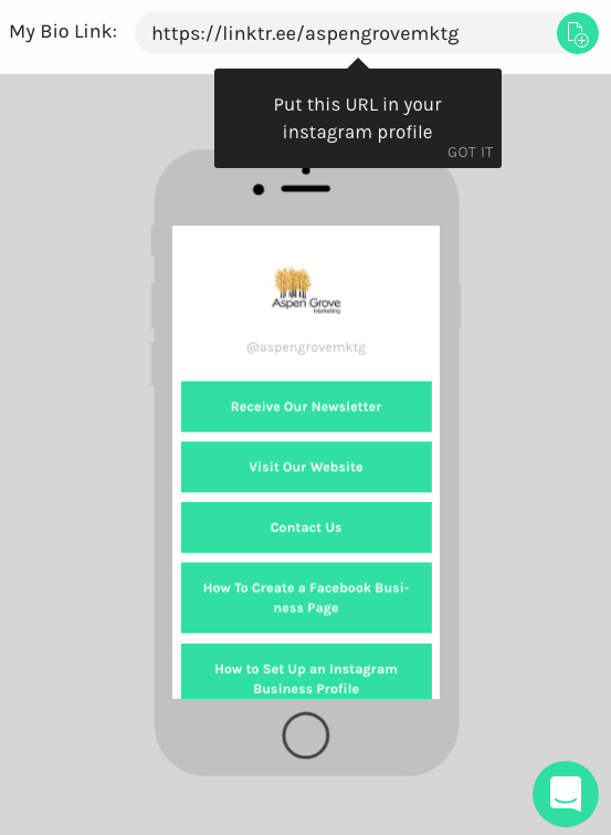Linktree for Business Instagram Accounts: How to Set It Up